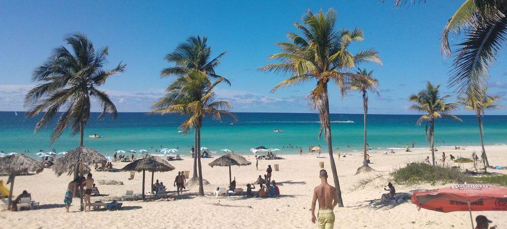 Bild: Palmen an der Playa del Este, Havannas Strand