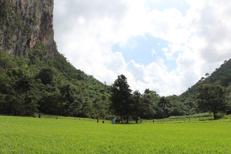 Bild mit Wiese und Bergen, typischer Ausblick in Vinales