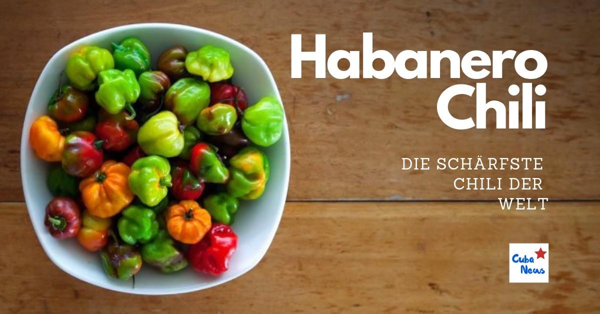 Coverbild mit einer Habanero Chili